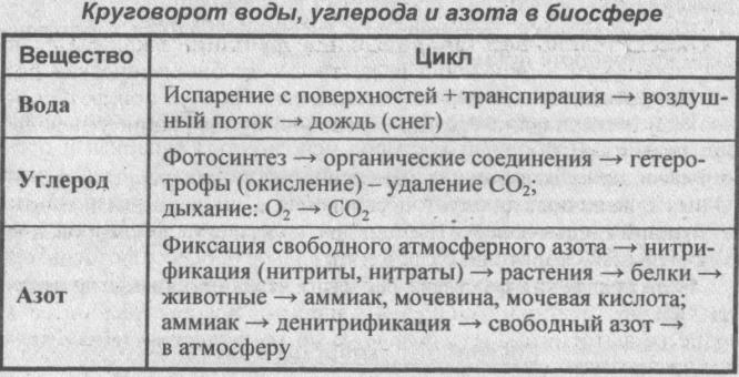 krugovorot-vodyi-ugleroda-i-azota-v-biosfere