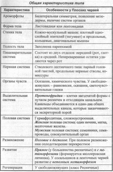 Общая характеристика типа плоских червей