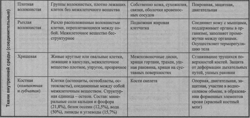 osnovnyie-vidyi-tkaney-organizma-cheloveka-2