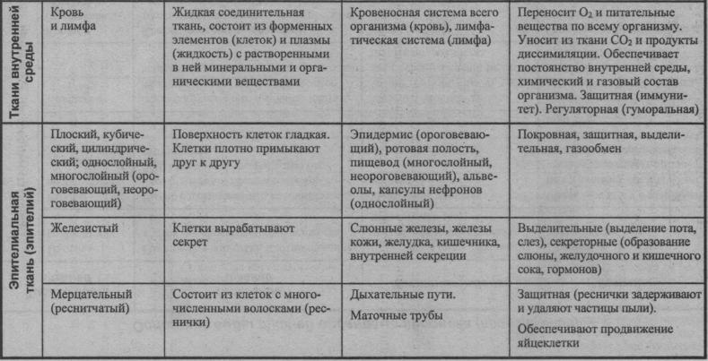 osnovnyie-vidyi-tkaney-organizma-cheloveka-3