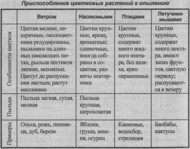 prisposoblenie-tsvetkovyih-rasteniy-k-opyileniyu