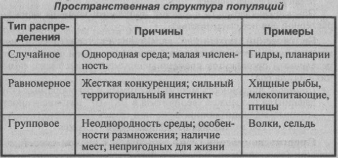 prostranstvennaya-struktura-populyatsii