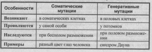 sravnitelnaya-harakteristika-generativnyih-i-somaticheskih-mutatsiy