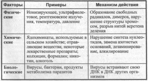 sravnitelnaya-harakteristika-mutagennyih-faktorov