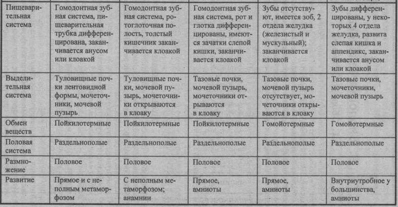 sravnitelnyiy-obzor-sistem-organov-pozvonochnyih-zhivotnyih-3