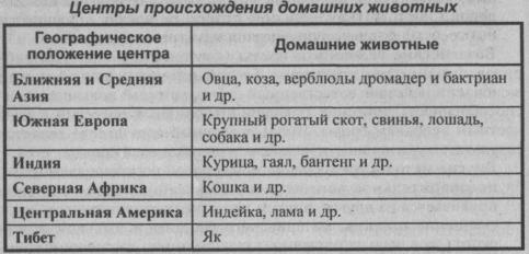 tsentryi-proishozhdeniya-domashnih-zhivotnyih