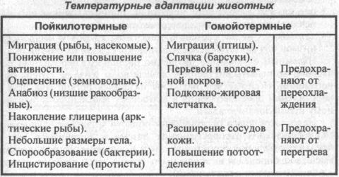 temperaturnyie-adaptatsii-zhivotnyih