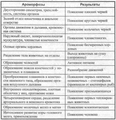 vazhneyshie-aromorfozyi-i-ih-rezultatyi