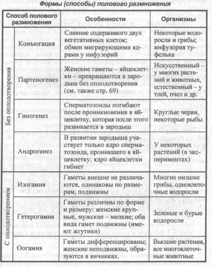 formyi-polovogo-razmnozheniya